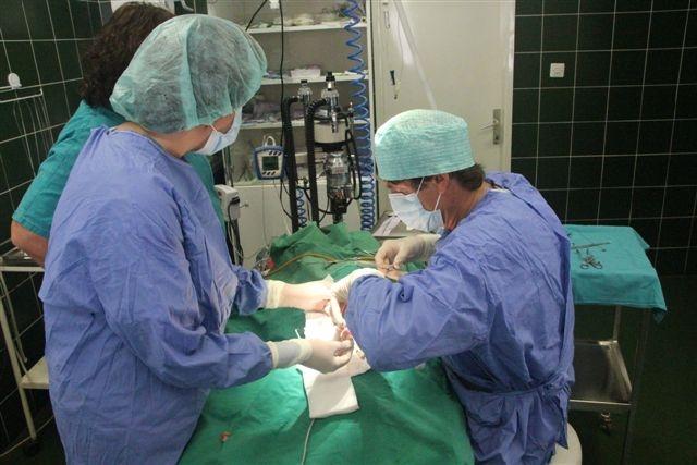 galerija_storitve_specialisticne_kirurgija