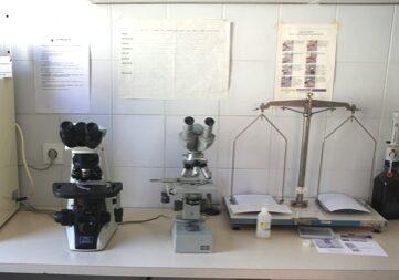 oprema_diagnosticna_mikroskop